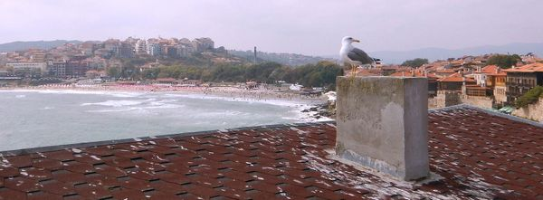 On the Roofs of Sozopol